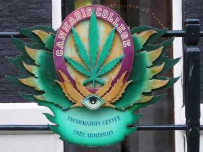 coffeeshop walking tour - cannabis college